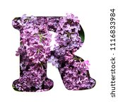 the letter r of the english... | Shutterstock . vector #1116833984