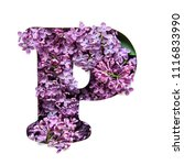 the letter p of the english... | Shutterstock . vector #1116833990
