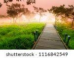a walk way in siam tulip field...   Shutterstock . vector #1116842549