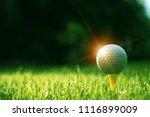 golf ball on tee in beautiful... | Shutterstock . vector #1116899009