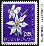 croatia zagreb  19 may 2018  a... | Shutterstock . vector #1116906440