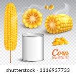 realistic corn in cob  grains ... | Shutterstock .eps vector #1116937733