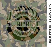 surprise on camouflaged texture | Shutterstock .eps vector #1116983570