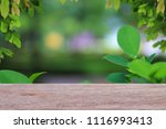 natural backgrounds old empty... | Shutterstock . vector #1116993413