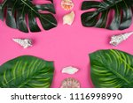 monstera and calathea leaves... | Shutterstock . vector #1116998990