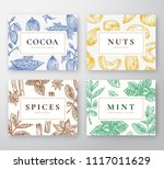 hand drawn cocoa beans  mint ... | Shutterstock .eps vector #1117011629