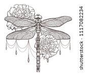 black dragonfly aeschna viridls ... | Shutterstock .eps vector #1117082234