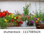 colorful of bouquet flowerpot... | Shutterstock . vector #1117085624
