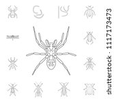 spider icon. simple element... | Shutterstock .eps vector #1117173473