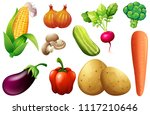 collection of various vegetables | Shutterstock .eps vector #1117210646