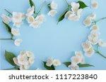 jasmine flowers frame top view  ...   Shutterstock . vector #1117223840