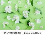jasmine flowers pattern top... | Shutterstock . vector #1117223873