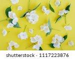 jasmine flowers pattern top... | Shutterstock . vector #1117223876