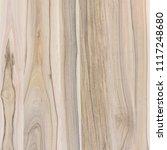 a fragment of a wooden panel... | Shutterstock . vector #1117248680