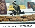 chocolate  display single... | Shutterstock . vector #1117280768