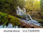 Log Jam By Panther Creek Falls...