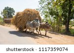 Small photo of KHAJURAHO, INDIA 24 FEBRUARY 2018 : Unidentified Indian farmer bringing crop on bullock cart; it is transportation of rural village.
