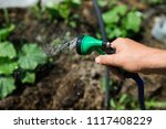 watering the seedlings of the... | Shutterstock . vector #1117408229
