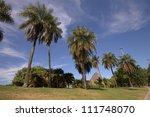 Park views of Sugar Loaf - stock photo