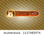 shiny emblem with 4kg... | Shutterstock .eps vector #1117485974