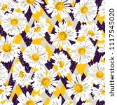 seamless pattern with chamomile.... | Shutterstock .eps vector #1117545020