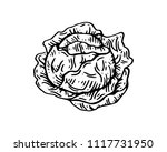 isolated detail vintage hand... | Shutterstock .eps vector #1117731950