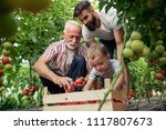 grandfather son and grandson... | Shutterstock . vector #1117807673