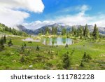 Beautiful wild flowers field with lake in the mountains with trees,  Mt. Rainier national Park area. Naches Peak Loop Trail. Roundtrip 3.0 miles, Elevation Gain 600 ft Highest Point5849 ft - stock photo
