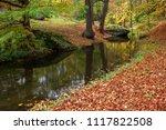 autumn landscape. river in the... | Shutterstock . vector #1117822508