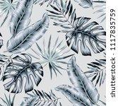 gray banana  monstera palm... | Shutterstock .eps vector #1117835759