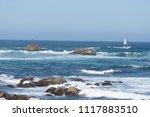 pacific grove  ca   usa  ... | Shutterstock . vector #1117883510