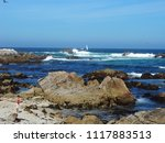 pacific grove  ca   usa  ... | Shutterstock . vector #1117883513