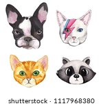 animals face   cat  dog and... | Shutterstock . vector #1117968380