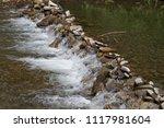 clean mountain river  stream | Shutterstock . vector #1117981604