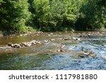 clean mountain river  stream | Shutterstock . vector #1117981880