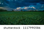 biogas plant and corn field... | Shutterstock . vector #1117990586