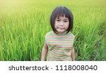 portrait of young asian little... | Shutterstock . vector #1118008040