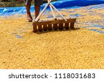 dehumidification process... | Shutterstock . vector #1118031683