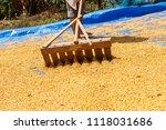 dehumidification process... | Shutterstock . vector #1118031686