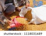 dehumidification process... | Shutterstock . vector #1118031689