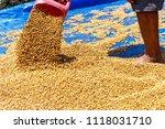 dehumidification process... | Shutterstock . vector #1118031710