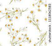 watercolor floral pattern with... | Shutterstock . vector #1118062583