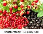Various Juicy Berries On A...