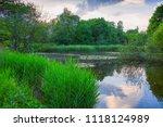 beautiful scenery of...   Shutterstock . vector #1118124989
