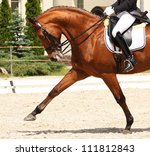 Stock photo dressage horse and rider 111812843