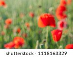 abstract  blur background of... | Shutterstock . vector #1118163329