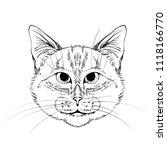 cat head  vector  black lines | Shutterstock .eps vector #1118166770