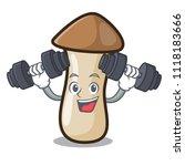 fitness pleurotus erynggi... | Shutterstock .eps vector #1118183666