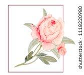 watercolor flowers  pink roses... | Shutterstock . vector #1118220980