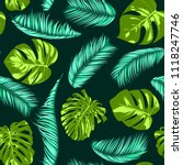vector monstera and palm leaves.... | Shutterstock .eps vector #1118247746